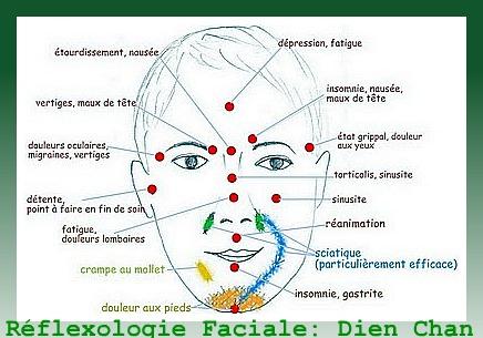 carte points reflexologie visage La Reflexologie Faciale Dien Chan